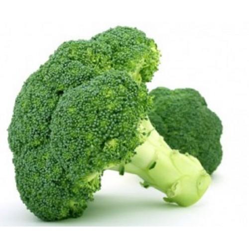"Rozsada brokuł ""CEZAR"" sadzonki brokułów"